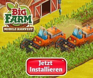 bigfarm 300x250 - bigfarm